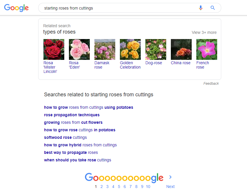 searches related to - google search results